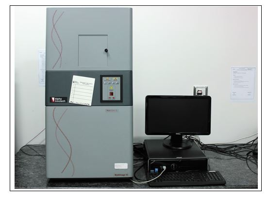 Molecular Imager Gel documentation system
